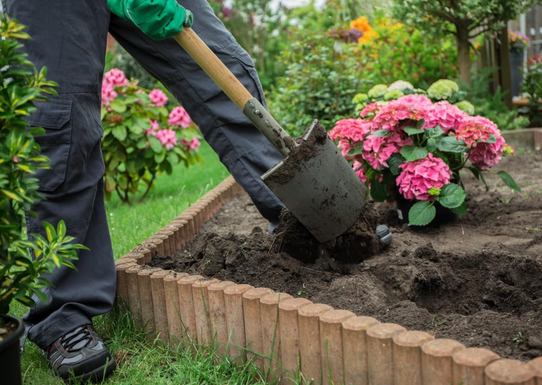 Poste d'horticulteur.trice-paysagiste